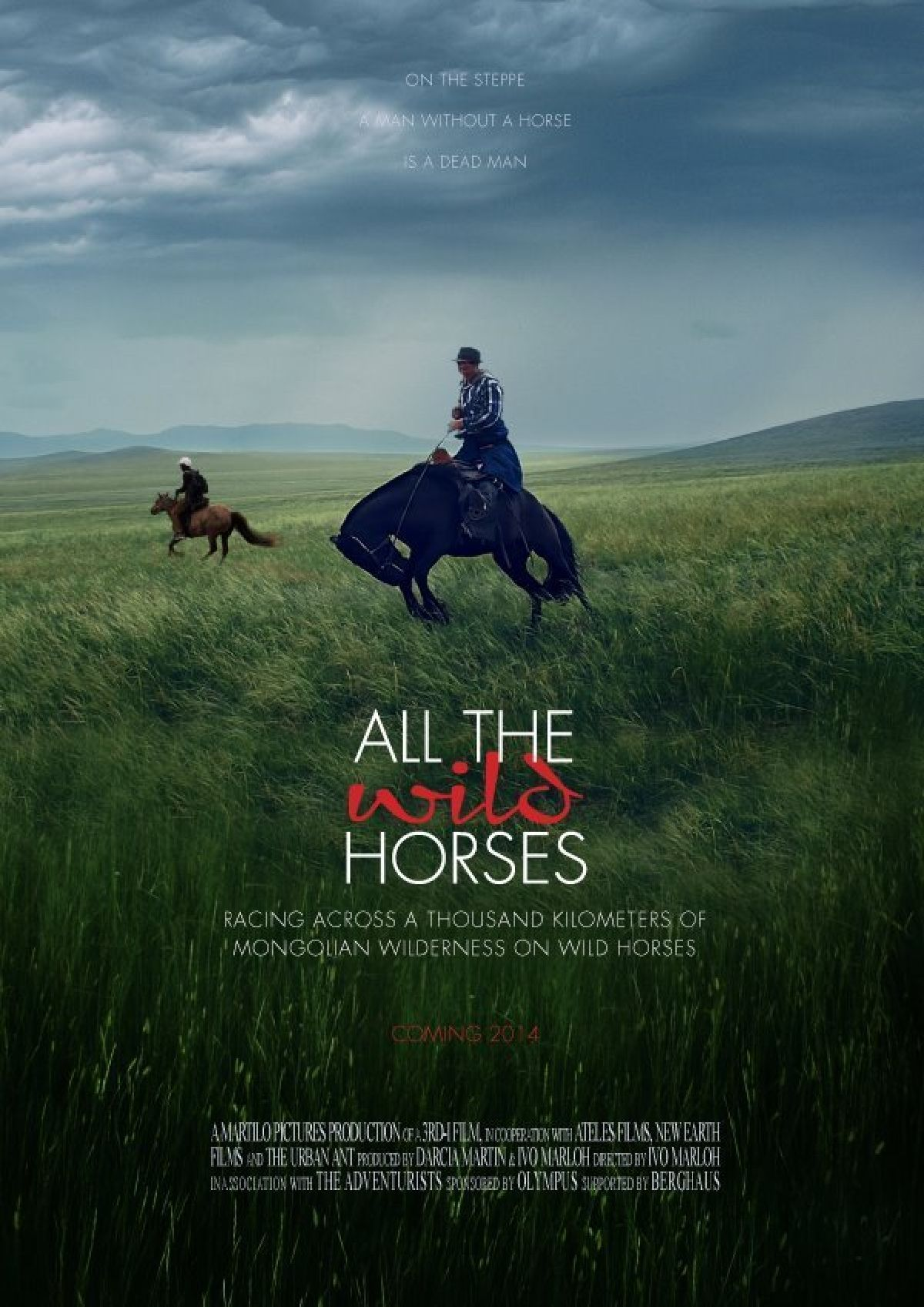 'All The Wild Horses' movie poster