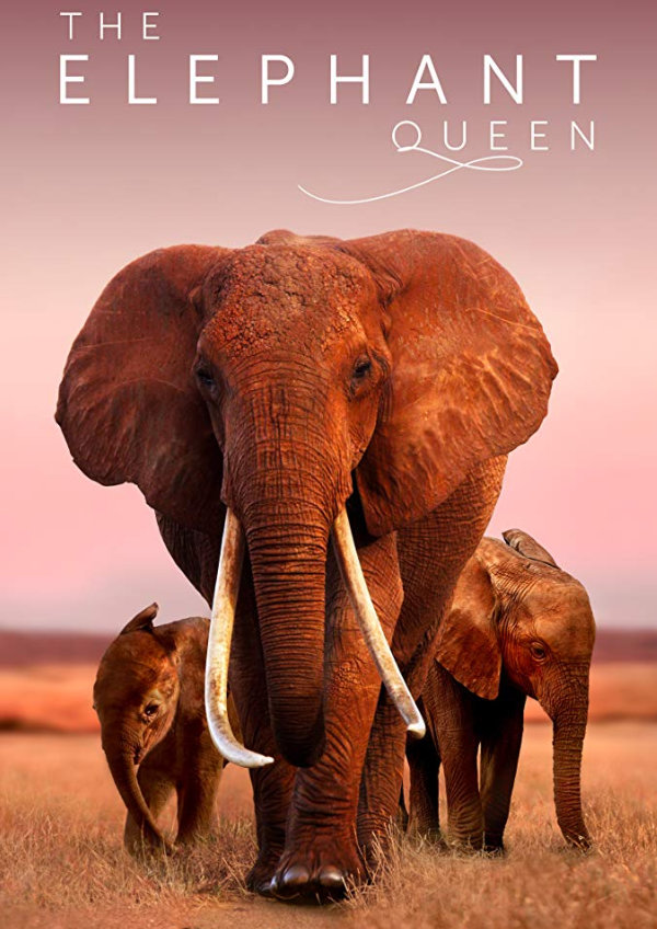 'The Elephant Queen' movie poster