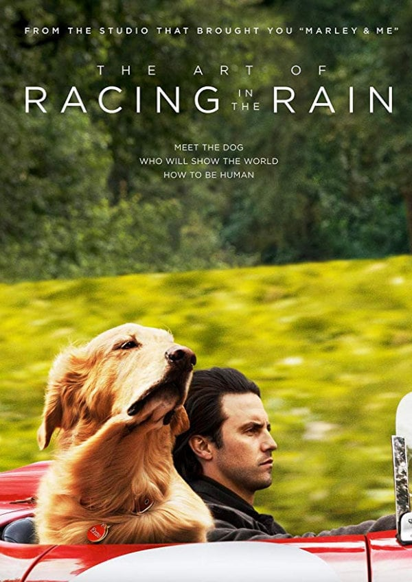 'The Art of Racing in the Rain' movie poster