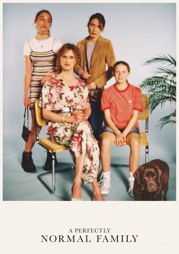 'A Perfectly Normal Family' movie poster