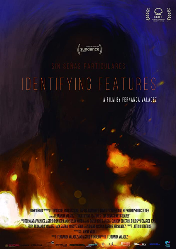 'Identifying Features (Sin Señas Particulares)' movie poster