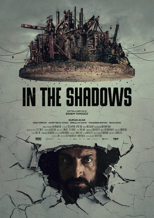 'In the Shadows' movie poster
